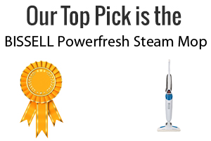 Special Steam Mop Review