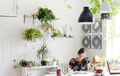 8 of the Best House Plants for the Kitchen Design